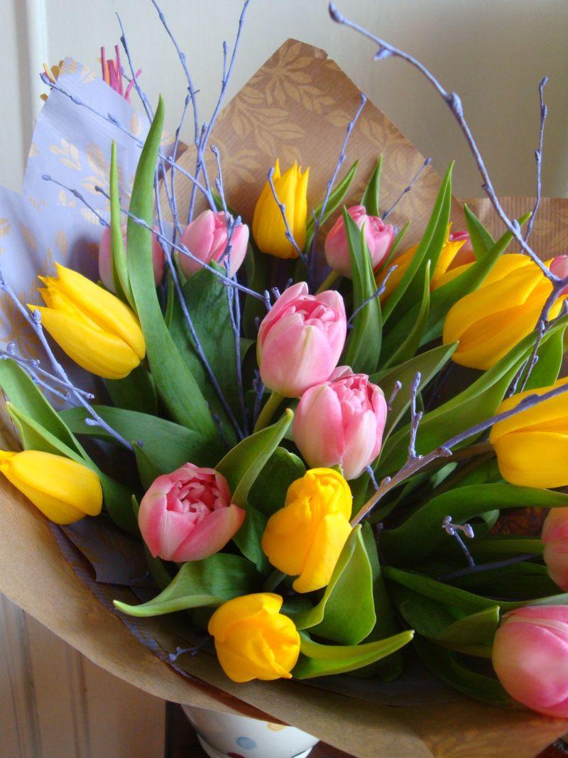 Spring has sprung 09 412