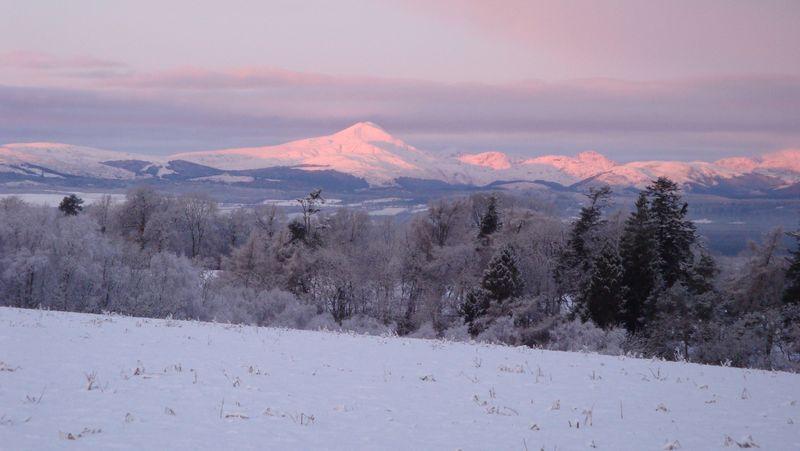 Winter 09 309